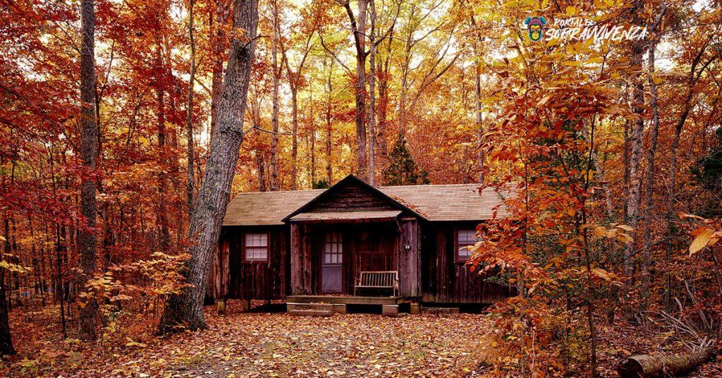 casa nel bosco autunnale. Vita rurale prepper
